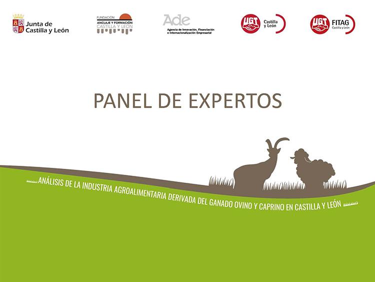 panel_expertos